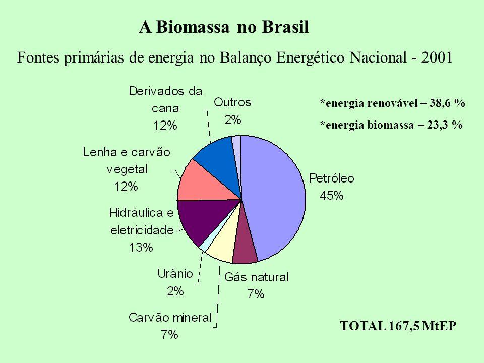 9 Fontes primárias de energia no Balanço Energético Nacional - 2001 TOTAL 167,5 MtEP *energia renovável – 38,6 % *energia biomassa – 23,3 % A Biomassa