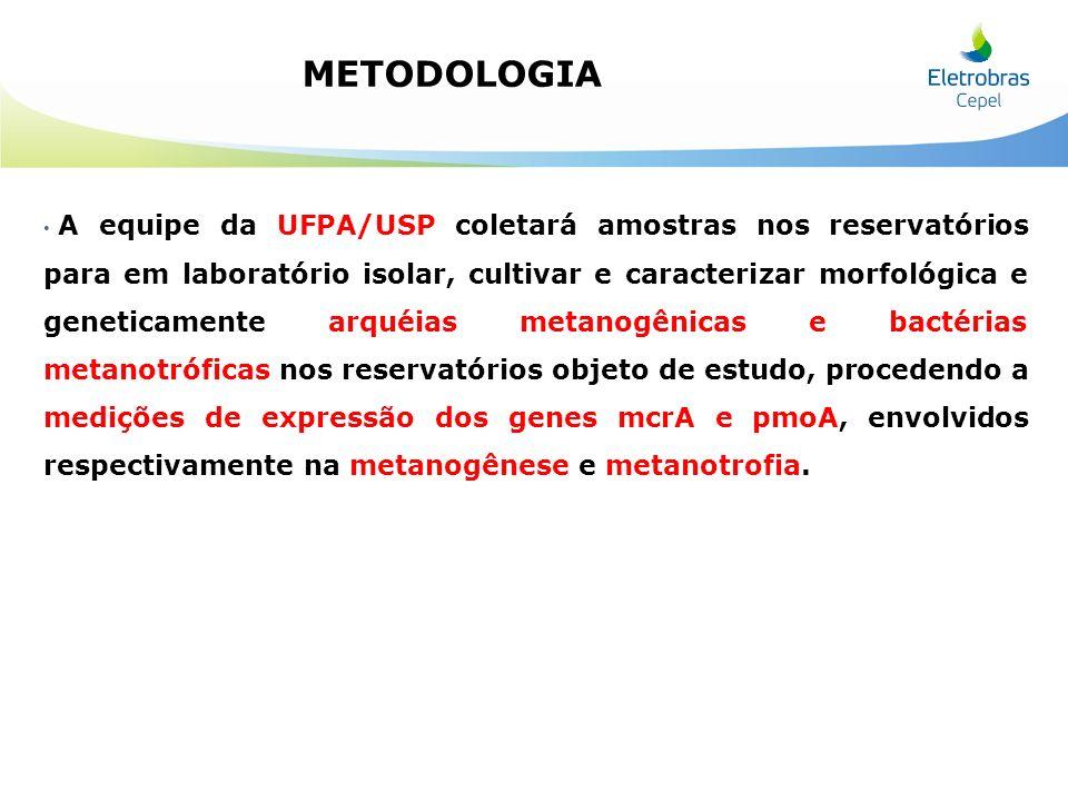 A equipe da UFPA/USP coletará amostras nos reservatórios para em laboratório isolar, cultivar e caracterizar morfológica e geneticamente arquéias meta