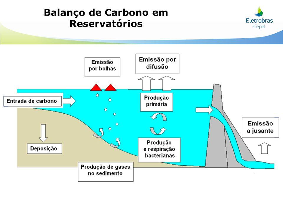 Entradas e saídas de carbono em reservatório, esse representado como retângulo de linhas mais grossas.