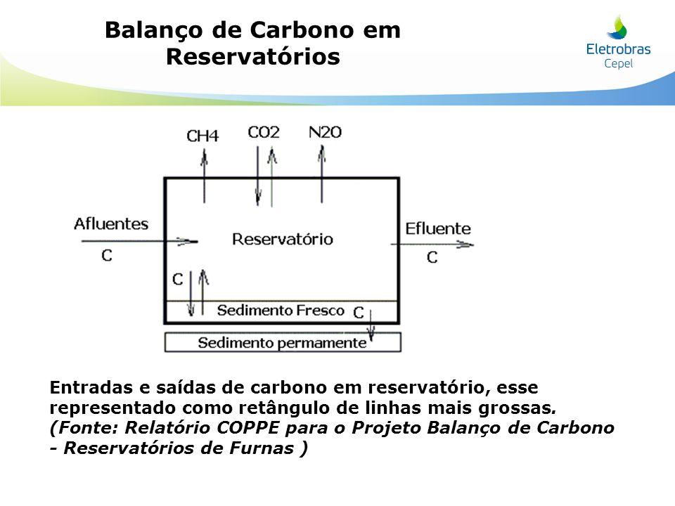 Entradas e saídas de carbono em reservatório, esse representado como retângulo de linhas mais grossas. (Fonte: Relatório COPPE para o Projeto Balanço