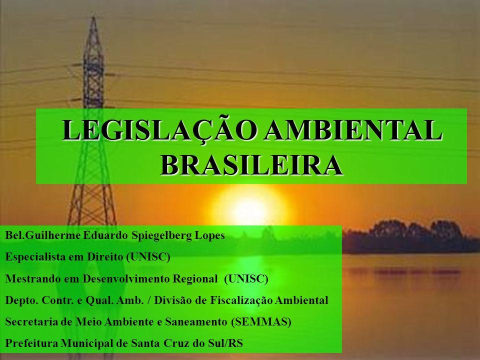 LEGISLAÇÃO AMBIENTAL BRASILEIRA Bel.Guilherme Eduardo Spiegelberg Lopes Especialista em Direito (UNISC) Mestrando em Desenvolvimento Regional (UNISC)