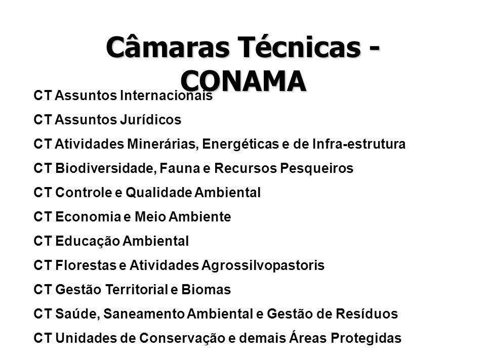 Câmaras Técnicas - CONAMA CT Assuntos Internacionais CT Assuntos Jurídicos CT Atividades Minerárias, Energéticas e de Infra-estrutura CT Biodiversidad