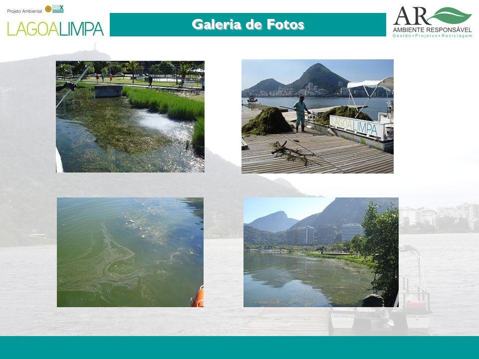 Pag. 9 Galeria de Fotos