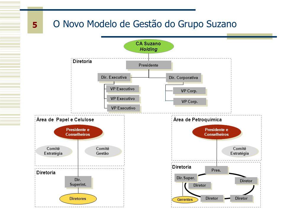5 CA Suzano Holding VP Executivo Presidente Diretoria Dir.