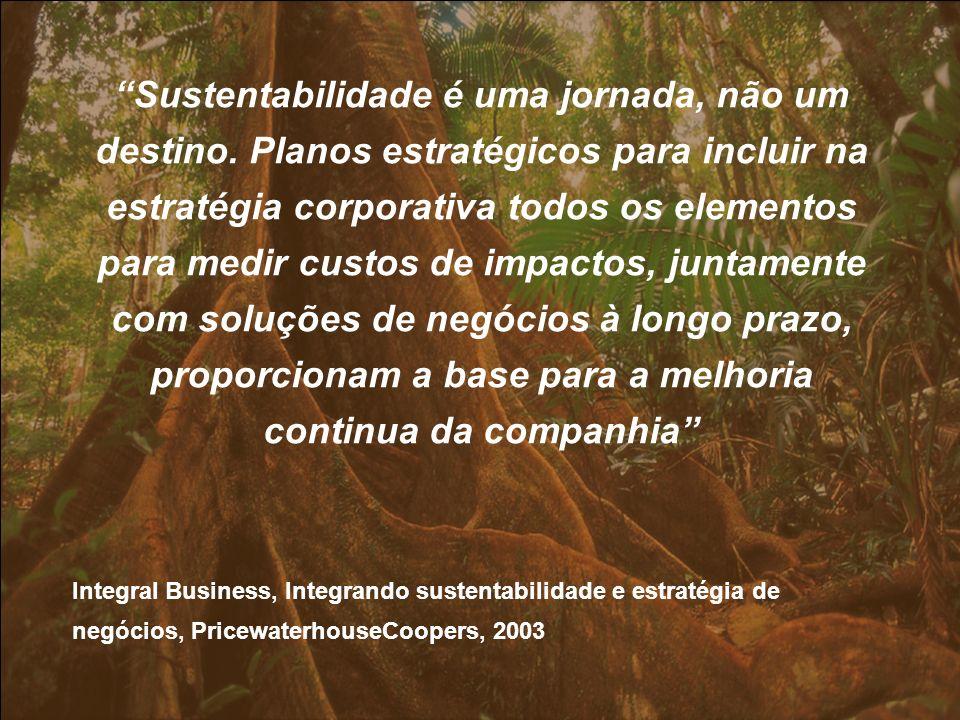 Sustentabilidade é uma jornada, não um destino. Planos estratégicos para incluir na estratégia corporativa todos os elementos para medir custos de imp