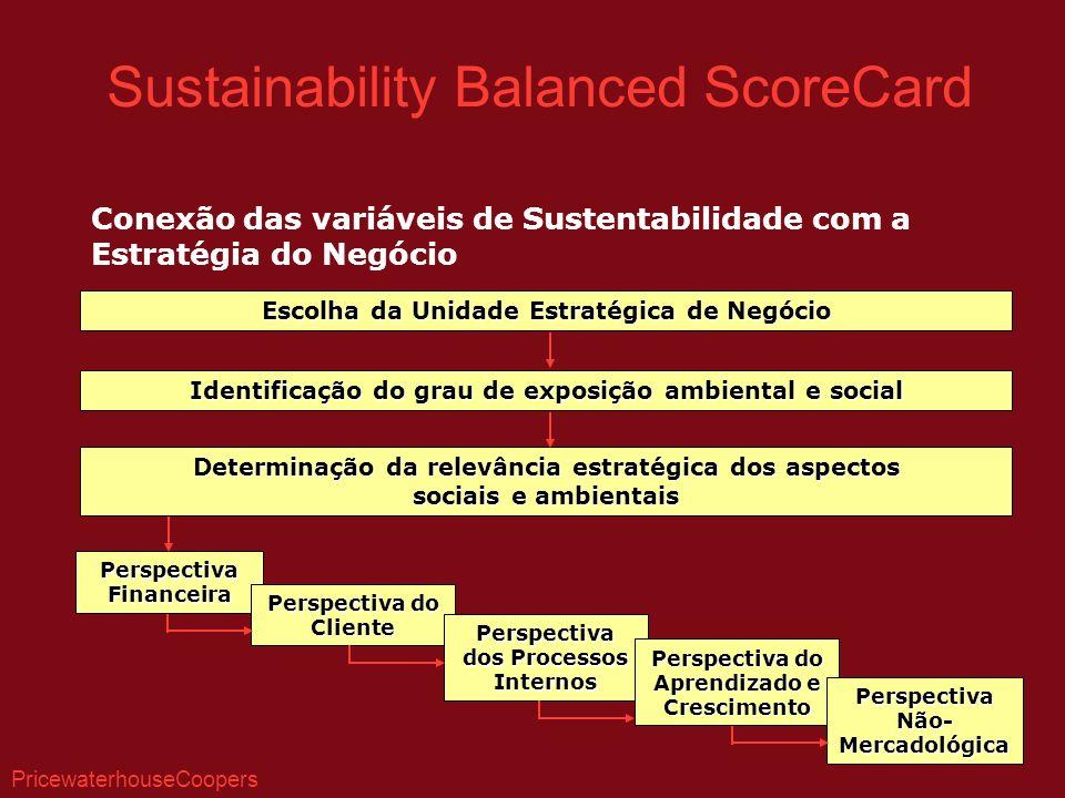 Conexão das variáveis de Sustentabilidade com a Estratégia do Negócio Escolha da Unidade Estratégica de Negócio Identificação do grau de exposição amb