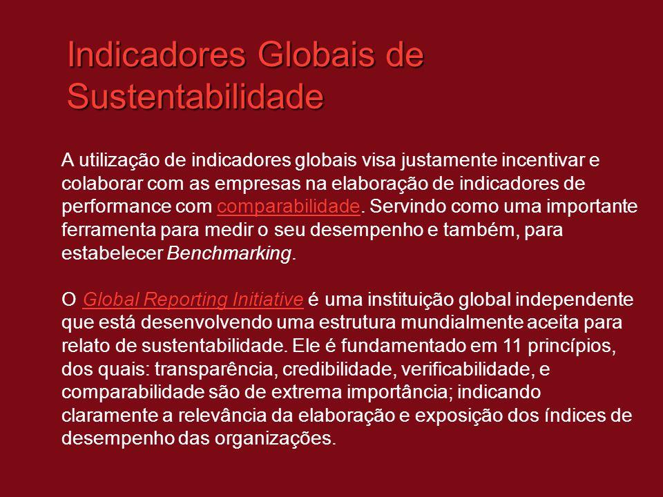 Indicadores Globais de Sustentabilidade A utilização de indicadores globais visa justamente incentivar e colaborar com as empresas na elaboração de in