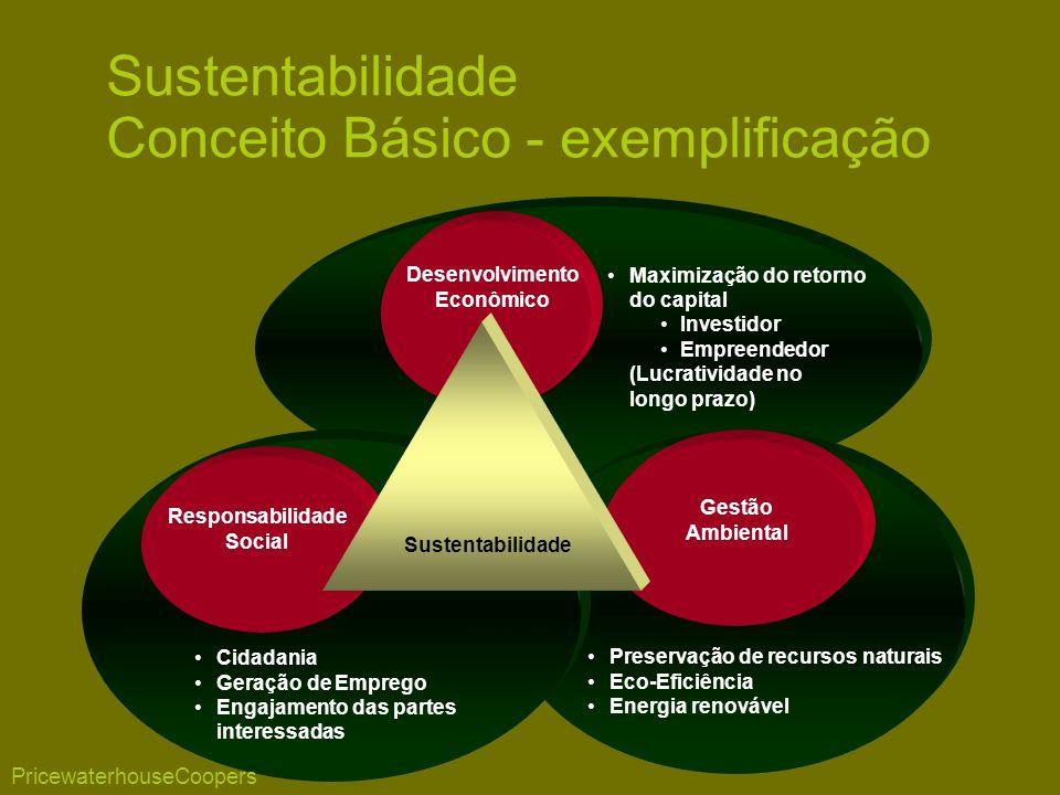 Maximização do retorno do capital Investidor Empreendedor (Lucratividade no longo prazo) Preservação de recursos naturais Eco-Eficiência Energia renov