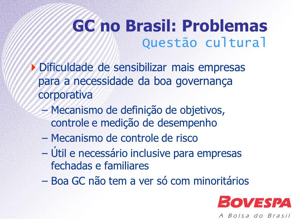 GC no Brasil: Problemas Questão cultural É avançar na profissionalização da gestão –CA (conselheiros habilitados, dispondo de informação/meios para exercerem seu papel) –Diretoria (profissionalização está mais avançada, mas também há, ainda, confusão com propriedade) É a gestão, de fato, visando à geração de valor para todos os acionistas