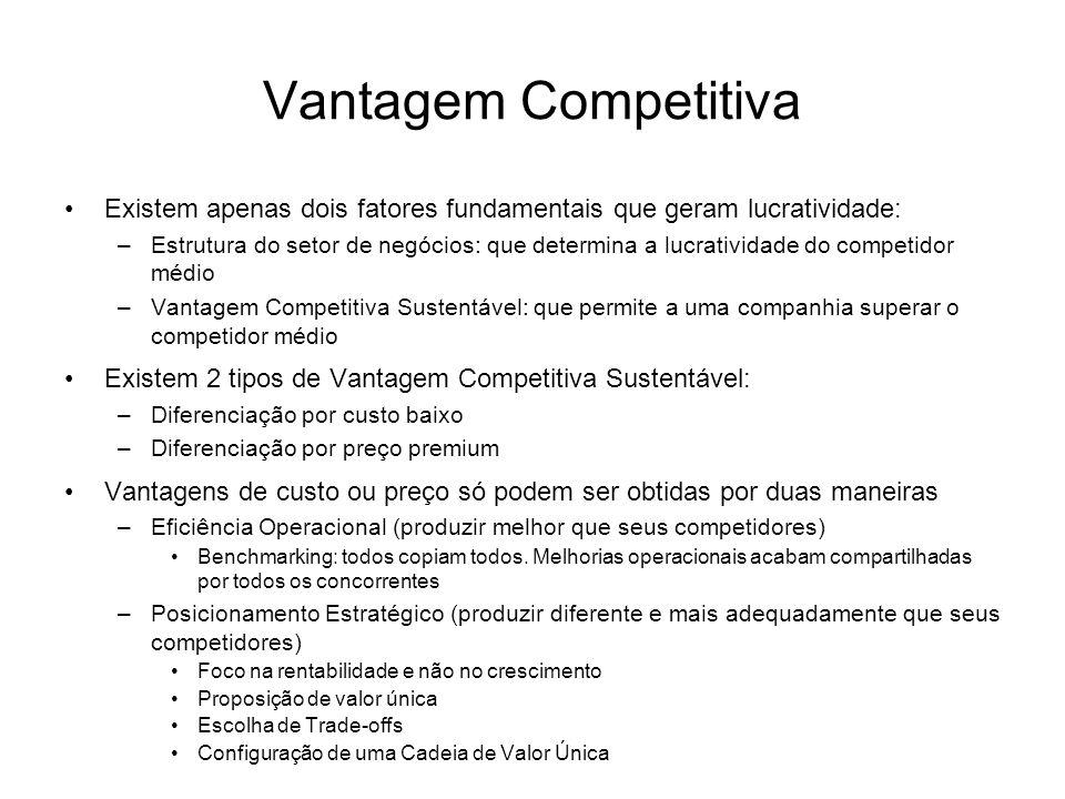 Vantagem Competitiva Existem apenas dois fatores fundamentais que geram lucratividade: –Estrutura do setor de negócios: que determina a lucratividade
