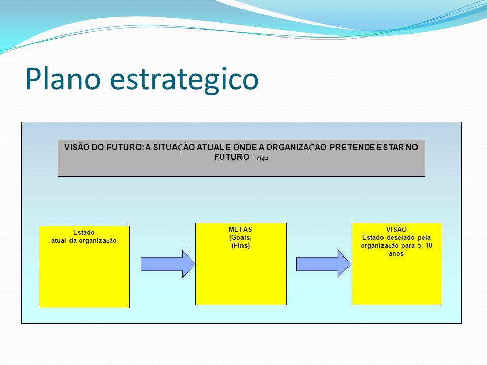 Plano estrategico METAS (Goals, (Fins) VISÃO Estado desejado pela organiza ç ão para 5, 10 anos Estado atual da organiza ç ão VISÃO DO FUTURO: A SITUA