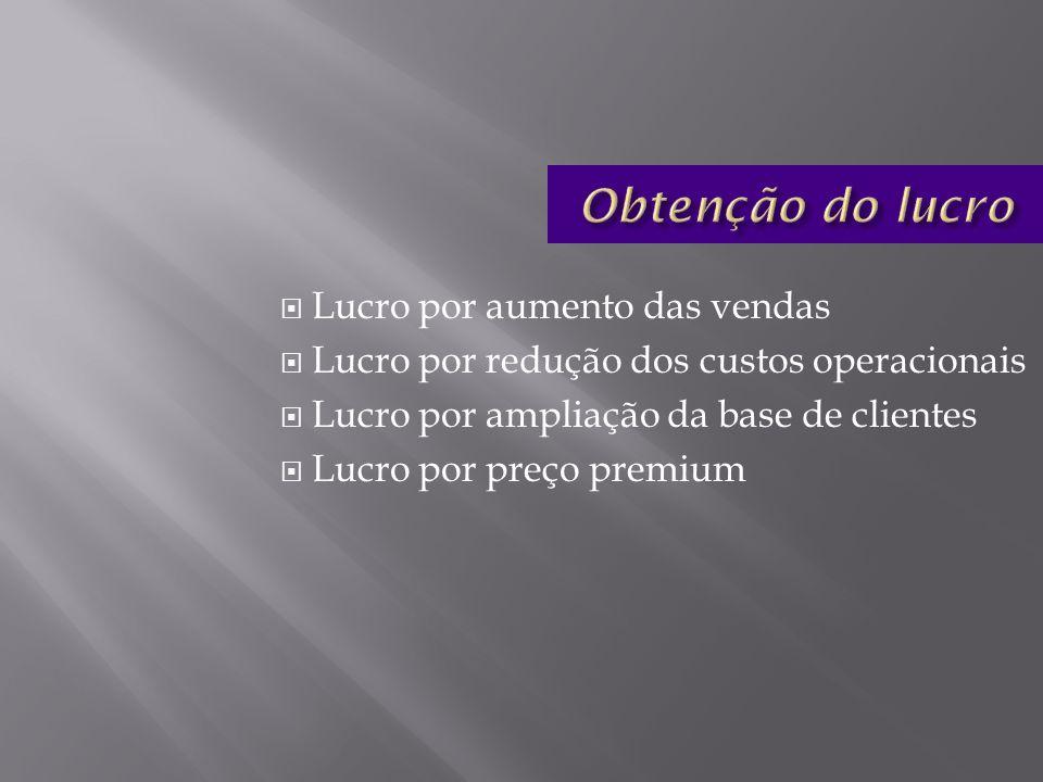 Lucro por aumento das vendas Lucro por redução dos custos operacionais Lucro por ampliação da base de clientes Lucro por preço premium