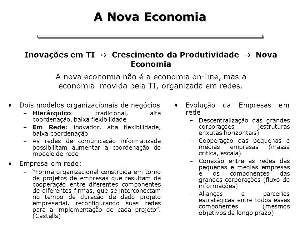 A Nova Economia Dois modelos organizacionais de negócios –Hierárquico: tradicional, alta coordenação, baixa flexibilidade –Em Rede: inovador, alta fle