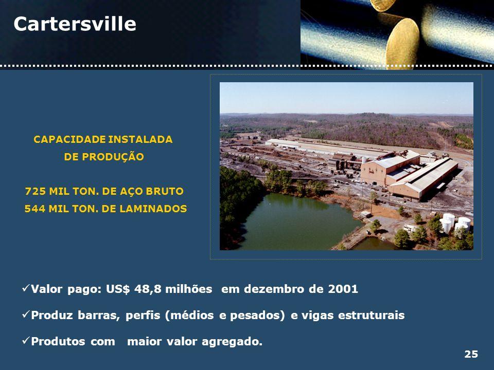 Cartersville Valor pago: US$ 48,8 milhões em dezembro de 2001 Produz barras, perfis (médios e pesados) e vigas estruturais Produtos com maior valor ag