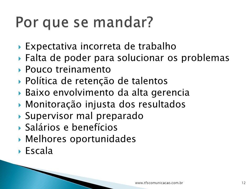 Expectativa incorreta de trabalho Falta de poder para solucionar os problemas Pouco treinamento Política de retenção de talentos Baixo envolvimento da