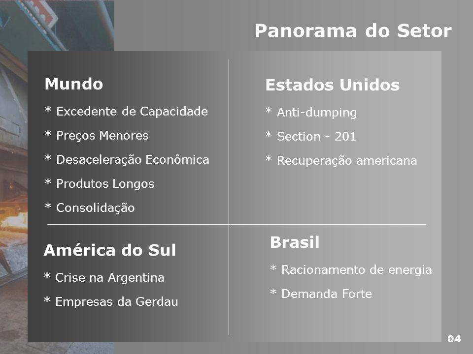 Panorama do Setor Mundo * Excedente de Capacidade * Preços Menores * Desaceleração Econômica * Produtos Longos * Consolidação América do Sul * Crise n