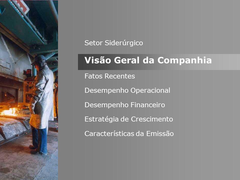 * 100 anos de tradição focados na produção de aço em mini-usinas e na distribuição de produtos siderúrgicos.