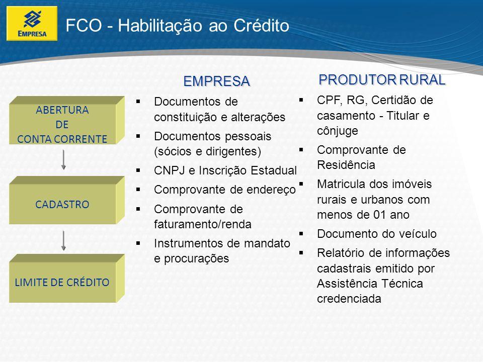FCO - Fluxo da proposta Agência Proponente CSO Proponente e Projetista elaboram esboço da proposta de financiamento e entregam na agência.