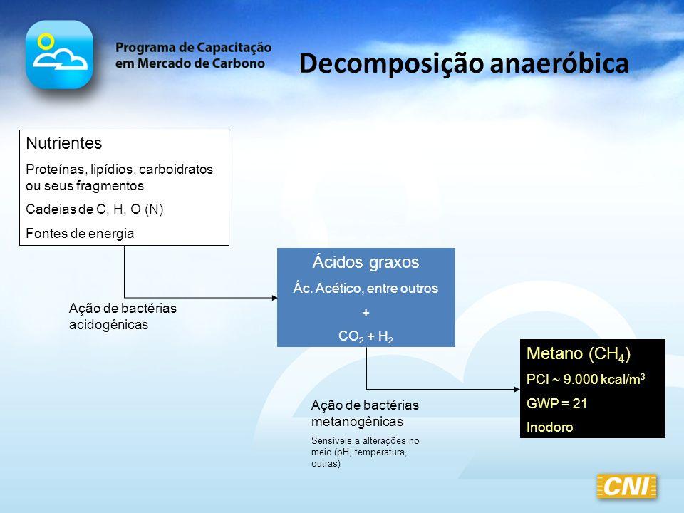 Decomposição anaeróbica Nutrientes Proteínas, lipídios, carboidratos ou seus fragmentos Cadeias de C, H, O (N) Fontes de energia Ácidos graxos Ác. Acé