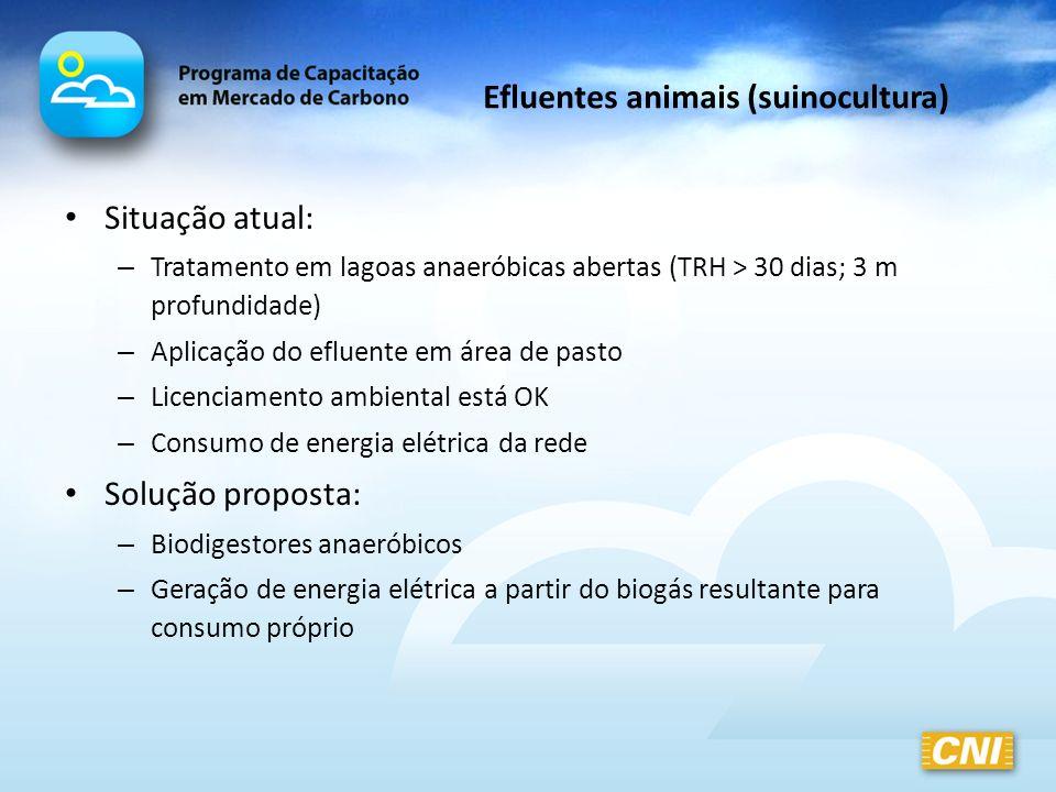 Efluentes animais (suinocultura) Situação atual: – Tratamento em lagoas anaeróbicas abertas (TRH > 30 dias; 3 m profundidade) – Aplicação do efluente