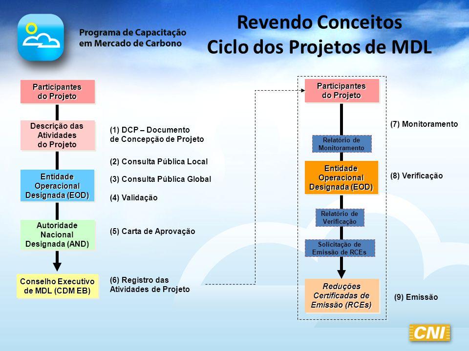 Projetos do MDL Pequena Escala x Larga Escala Projetos de Pequena Escala – Procedimentos e modalidades simplificados – Classificação Tipo I – Projetos de geração de energia renovável com potência instalada limitada a 15 MW ou equivalente Tipo II – Projetos de melhoria da eficiência energética que reduza o consumo em até 60 GWh por ano, do lado da produção ou da demanda; Tipo III - Outras atividades de projeto limitadas à redução de 60.000 tCO 2 e por ano.
