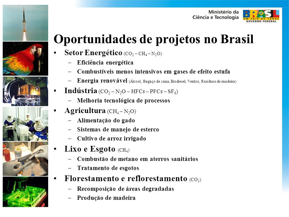 Oportunidades de projetos no Brasil Setor Energético (CO 2 – CH 4 – N 2 O) –Eficiência energética –Combustíveis menos intensivos em gases de efeito estufa –Energia renovável (Álcool, Bagaço de cana, Biodiesel, Ventos, Resíduos de madeira) Indústria (CO 2 – N 2 O – HFCs – PFCs – SF 6 ) –Melhoria tecnológica de processos Agricultura (CH 4 – N 2 O) –Alimentação do gado –Sistemas de manejo de esterco –Cultivo de arroz irrigado Lixo e Esgoto (CH 4 ) –Combustão de metano em aterros sanitários –Tratamento de esgotos Florestamento e reflorestamento (CO 2 ) –Recomposição de áreas degradadas –Produção de madeira