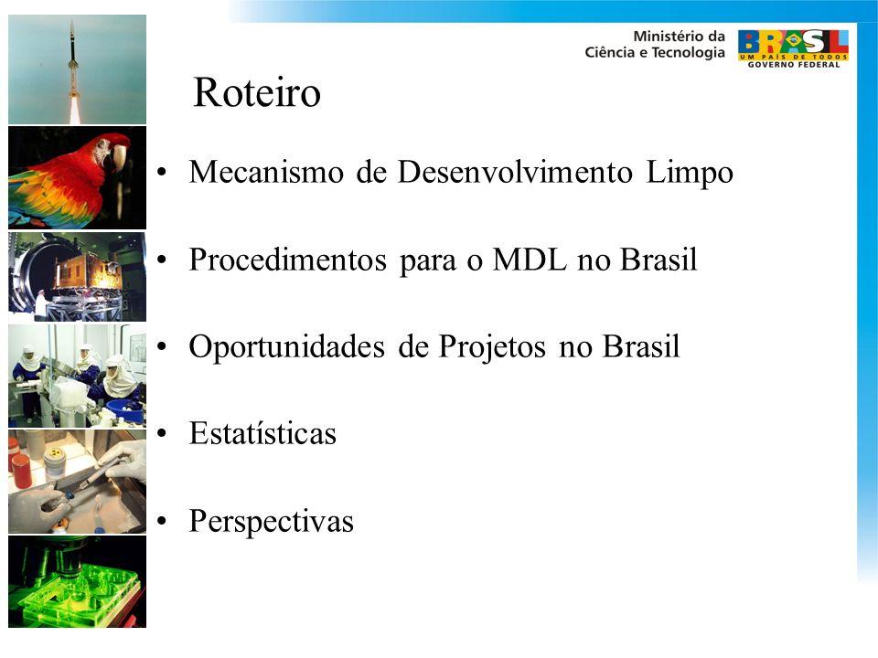 Roteiro Mecanismo de Desenvolvimento Limpo Procedimentos para o MDL no Brasil Oportunidades de Projetos no Brasil Estatísticas Perspectivas