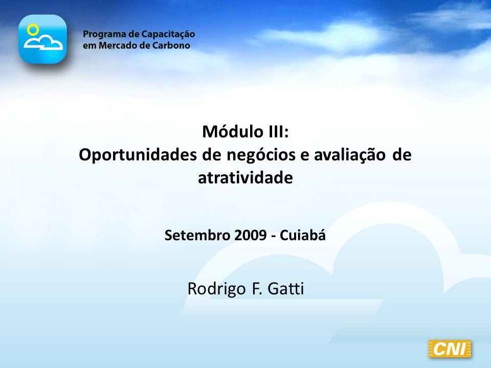Módulo III: Oportunidades de negócios e avaliação de atratividade Setembro 2009 - Cuiabá Rodrigo F. Gatti
