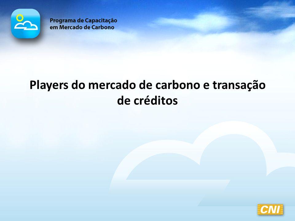 Players do mercado de carbono e transação de créditos