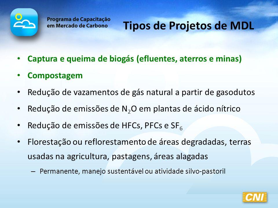 Tipos de Projetos de MDL Captura e queima de biogás (efluentes, aterros e minas) Compostagem Redução de vazamentos de gás natural a partir de gasoduto