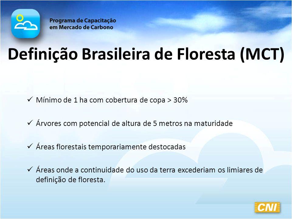 Definição Brasileira de Floresta (MCT) Mínimo de 1 ha com cobertura de copa > 30% Árvores com potencial de altura de 5 metros na maturidade Áreas flor