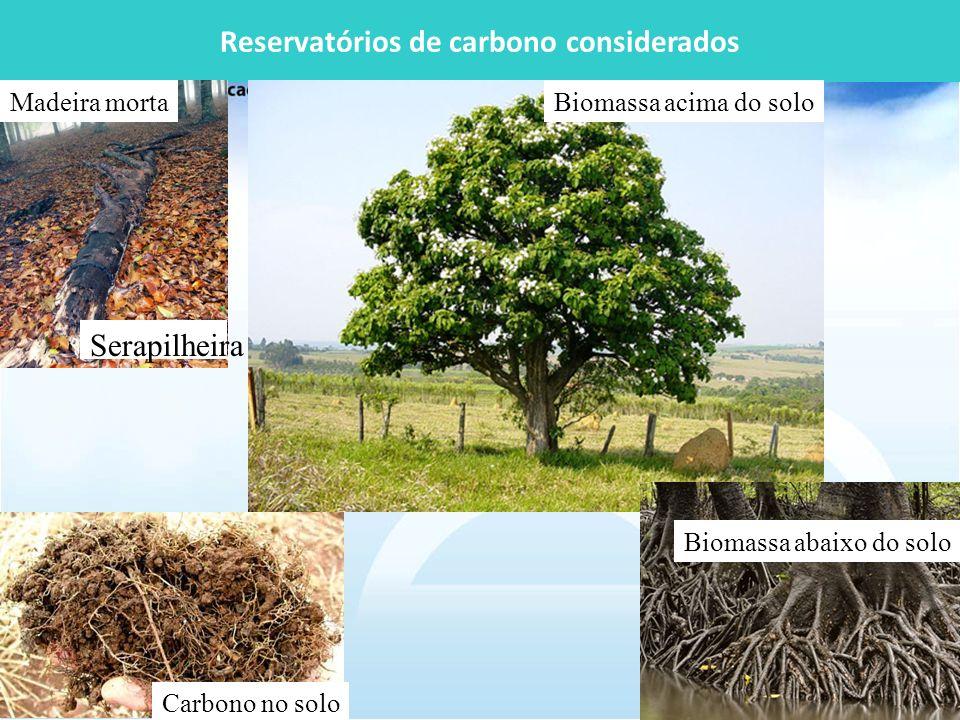 Reservatórios de carbono considerados Biomassa acima do solo Biomassa abaixo do solo Carbono no solo Madeira morta Serapilheira