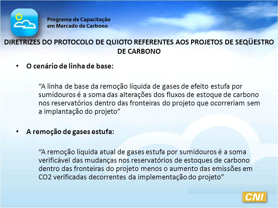 DIRETRIZES DO PROTOCOLO DE QUIOTO REFERENTES AOS PROJETOS DE SEQÜESTRO DE CARBONO O cenário de linha de base: A linha de base da remoção líquida de ga