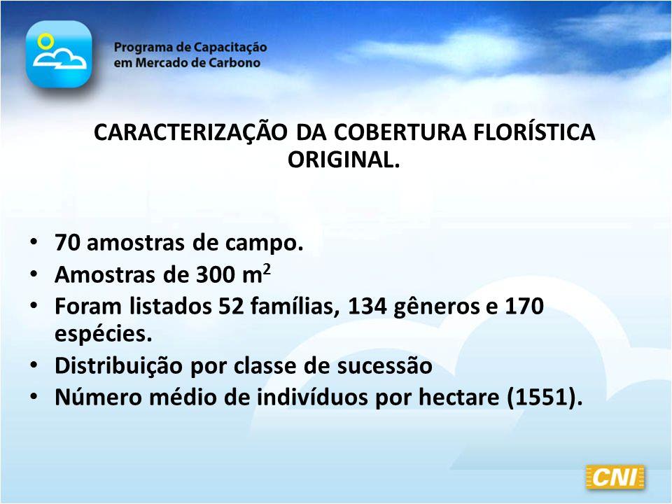CARACTERIZAÇÃO DA COBERTURA FLORÍSTICA ORIGINAL. 70 amostras de campo. Amostras de 300 m 2 Foram listados 52 famílias, 134 gêneros e 170 espécies. Dis