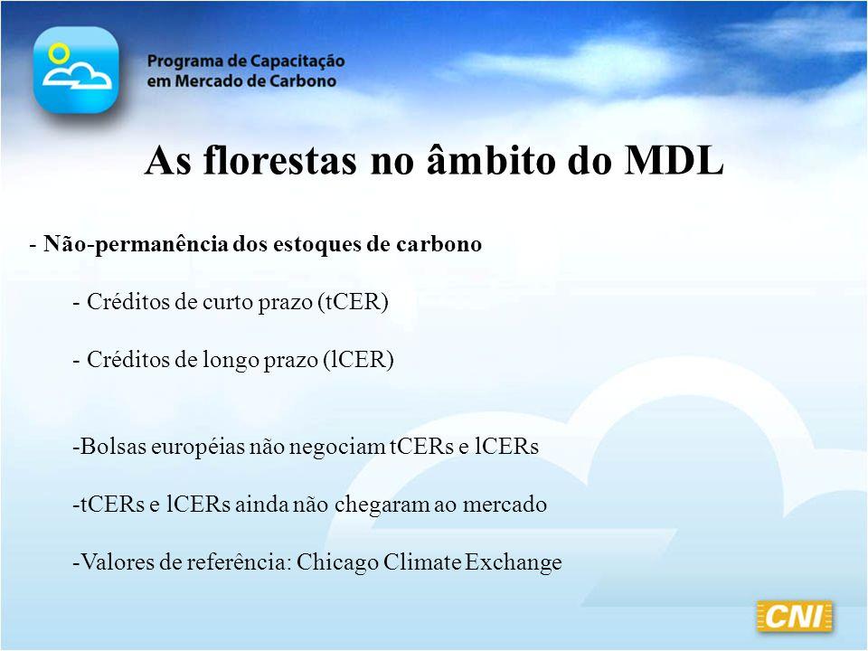 As florestas no âmbito do MDL - Não-permanência dos estoques de carbono - Créditos de curto prazo (tCER) - Créditos de longo prazo (lCER) -Bolsas euro