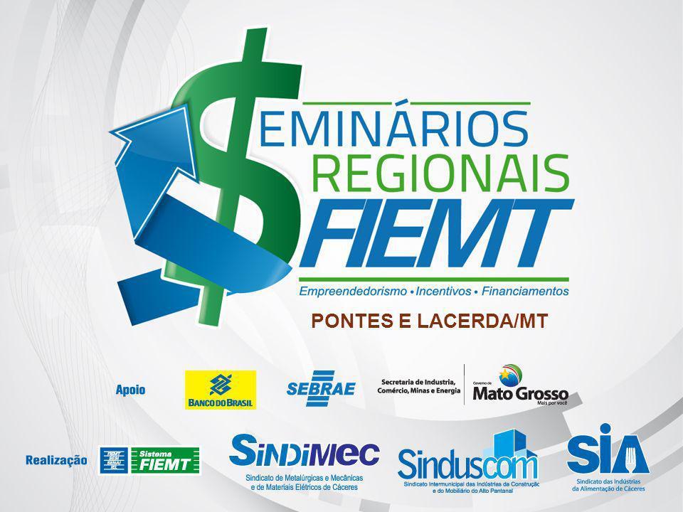 II – EVOLUÇÃO DOS INDICADORES ECONÔMICOS A Região Sudoeste tem a participação de 8% da área de EUCALIPTO – plantada basicamente para a produção de energia para a agroindústria, e a TECA – que representa 16% da área total plantada do estado, com destino à exportações.