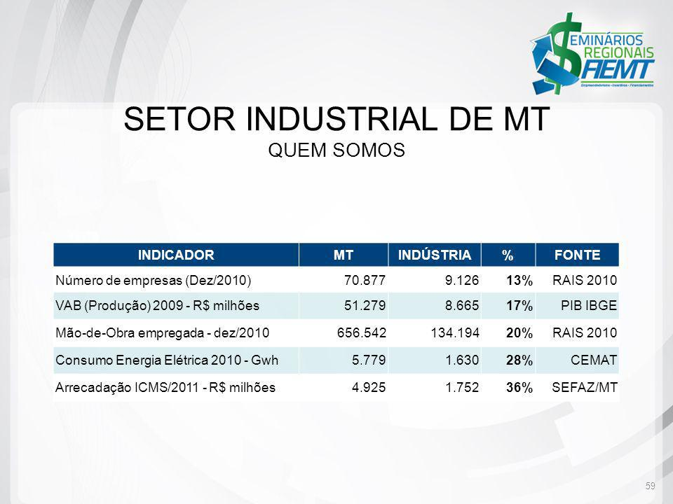 59 INDICADORMTINDÚSTRIA%FONTE Número de empresas (Dez/2010)70.8779.12613%RAIS 2010 VAB (Produção) 2009 - R$ milhões51.2798.66517%PIB IBGE Mão-de-Obra