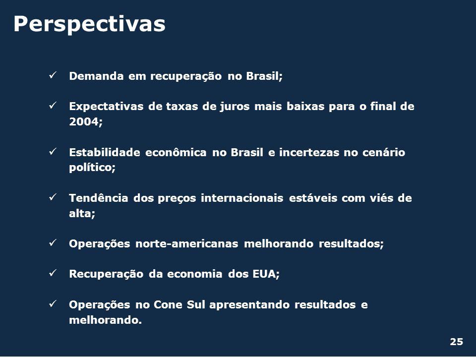 Demanda em recuperação no Brasil; Expectativas de taxas de juros mais baixas para o final de 2004; Estabilidade econômica no Brasil e incertezas no ce