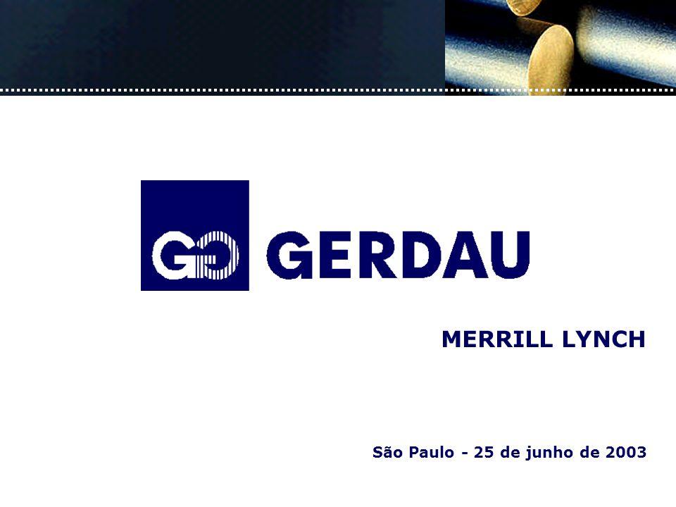 São Paulo - 25 de junho de 2003 MERRILL LYNCH