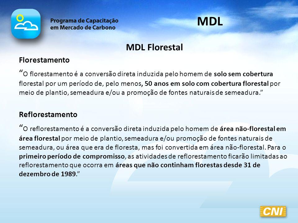 MDL Florestal Florestamento O florestamento é a conversão direta induzida pelo homem de solo sem cobertura florestal por um período de, pelo menos, 50