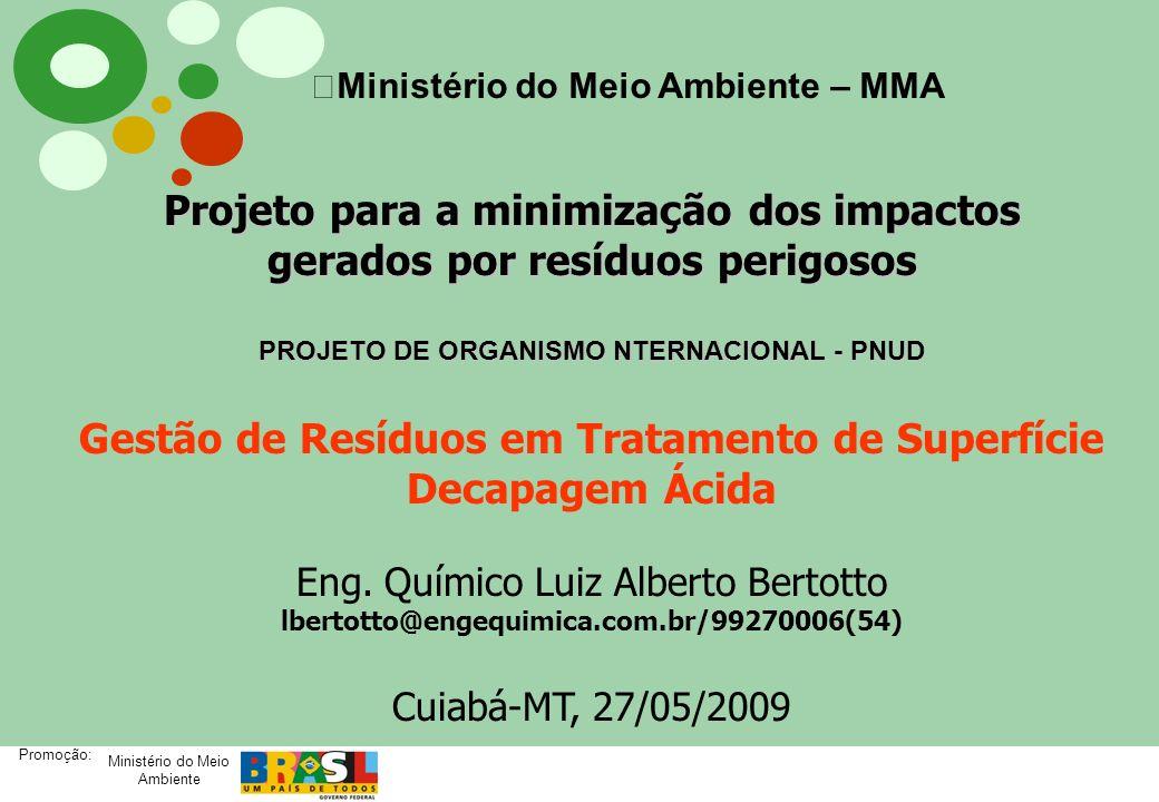 Ministério do Meio Ambiente Promoção: Projeto para a minimização dos impactos gerados por resíduos perigosos PROJETO DE ORGANISMO NTERNACIONAL - PNUD