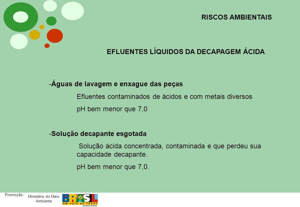 Ministério do Meio Ambiente Promoção: RISCOS AMBIENTAIS EFLUENTES LÍQUIDOS DA DECAPAGEM ÁCIDA -Águas de lavagem e enxague das peças Efluentes contamin