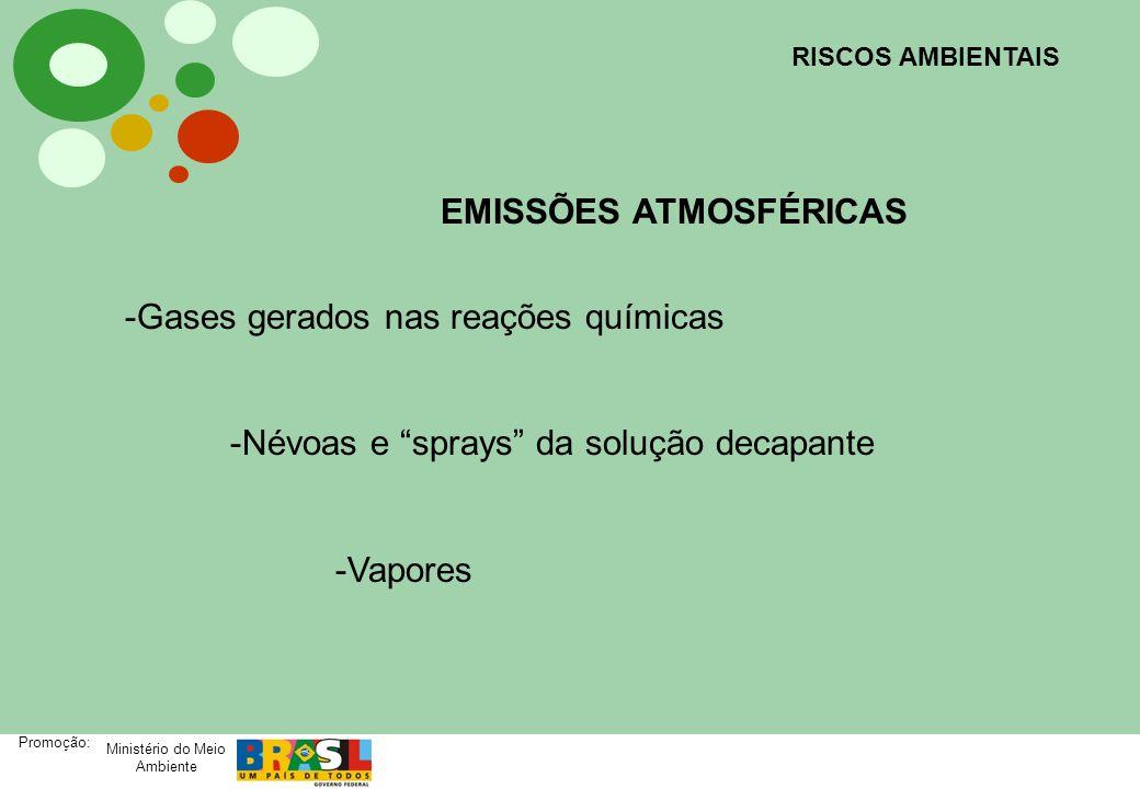 Ministério do Meio Ambiente Promoção: RISCOS AMBIENTAIS EMISSÕES ATMOSFÉRICAS -Gases gerados nas reações químicas -Névoas e sprays da solução decapant