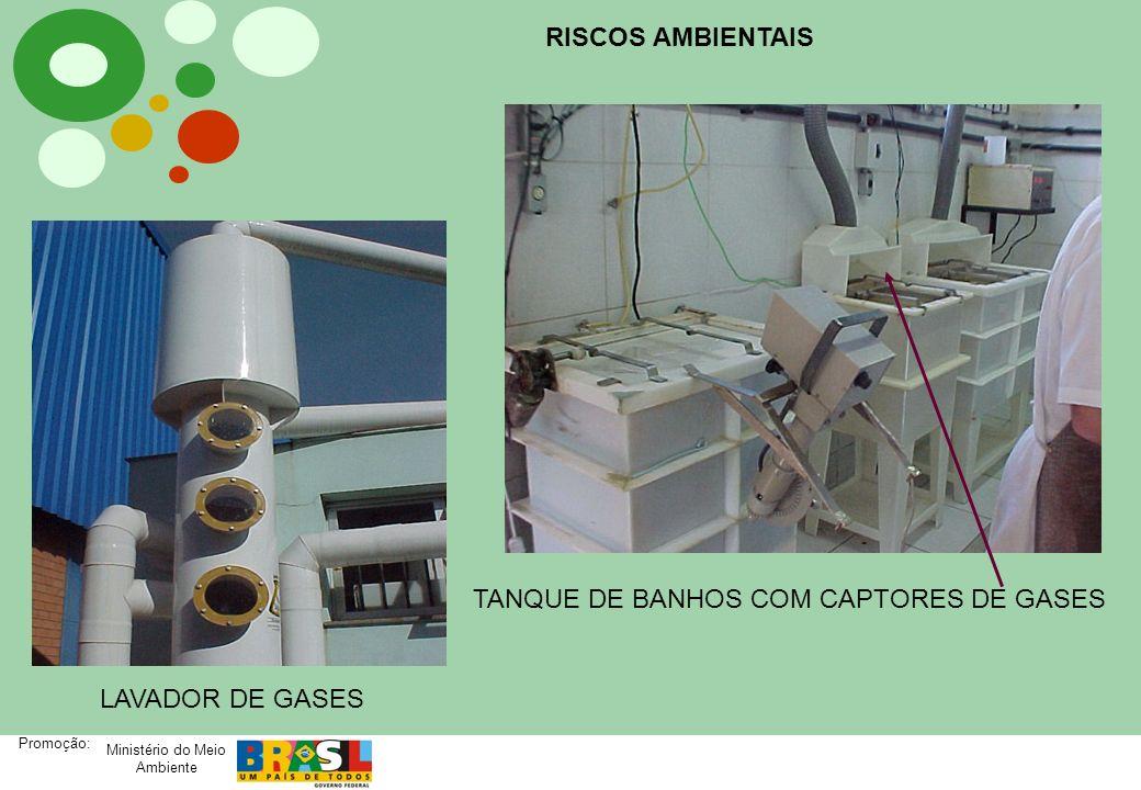 Ministério do Meio Ambiente Promoção: TANQUE DE BANHOS COM CAPTORES DE GASES LAVADOR DE GASES RISCOS AMBIENTAIS