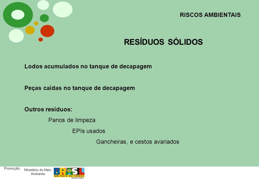 Ministério do Meio Ambiente Promoção: RISCOS AMBIENTAIS RESÍDUOS SÓLIDOS Lodos acumulados no tanque de decapagem Peças caídas no tanque de decapagem O