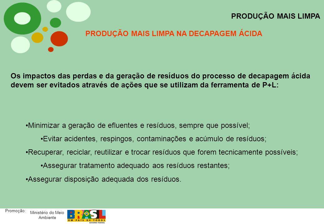 Ministério do Meio Ambiente Promoção: PRODUÇÃO MAIS LIMPA PRODUÇÃO MAIS LIMPA NA DECAPAGEM ÁCIDA Os impactos das perdas e da geração de resíduos do pr