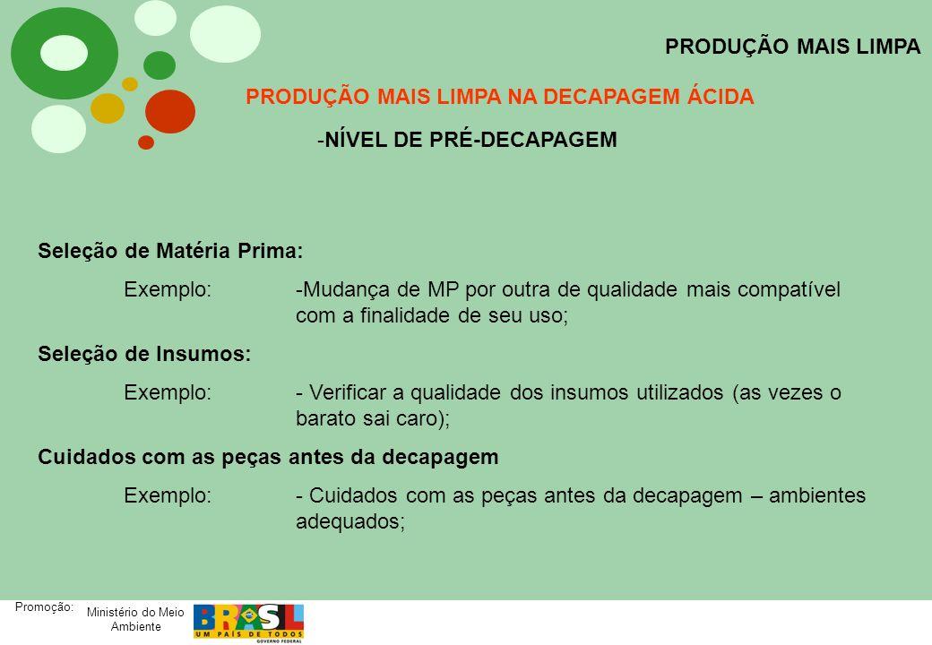 Ministério do Meio Ambiente Promoção: PRODUÇÃO MAIS LIMPA PRODUÇÃO MAIS LIMPA NA DECAPAGEM ÁCIDA -NÍVEL DE PRÉ-DECAPAGEM Seleção de Matéria Prima: Exe