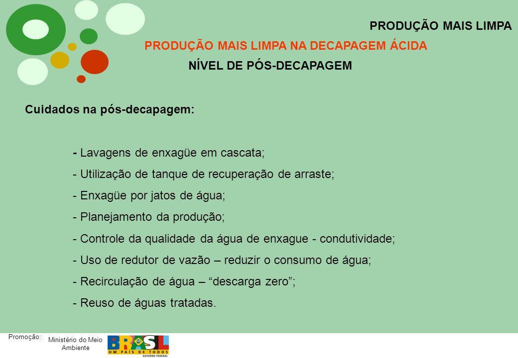 Ministério do Meio Ambiente Promoção: PRODUÇÃO MAIS LIMPA PRODUÇÃO MAIS LIMPA NA DECAPAGEM ÁCIDA NÍVEL DE PÓS-DECAPAGEM Cuidados na pós-decapagem: - L