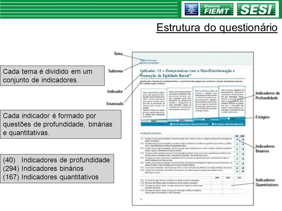 Estrutura do questionário (40) Indicadores de profundidade (294) Indicadores binários (167) Indicadores quantitativos Cada tema é dividido em um conju