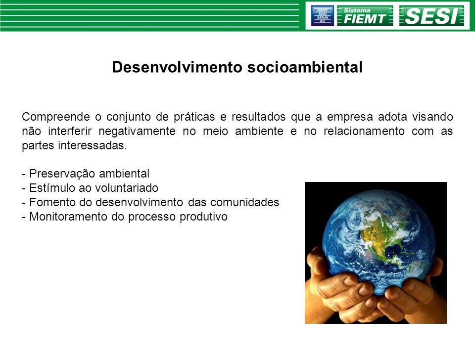 Desenvolvimento socioambiental Compreende o conjunto de práticas e resultados que a empresa adota visando não interferir negativamente no meio ambient